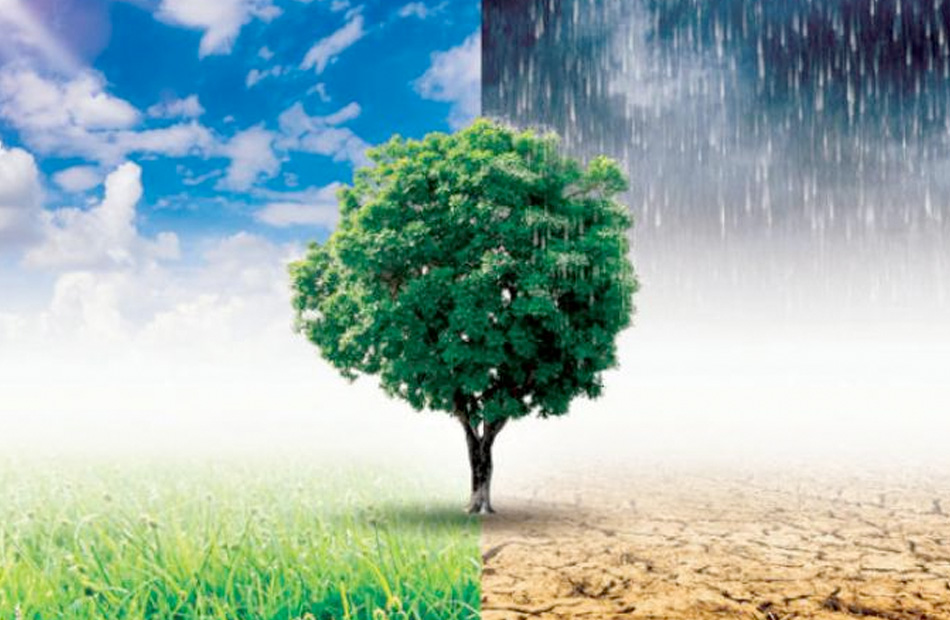 IPCC Menyatakan Akan Terjadi Perubahan Iklim Secara Drastis